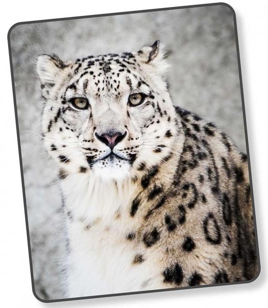 Good Morning Plaid Leopard