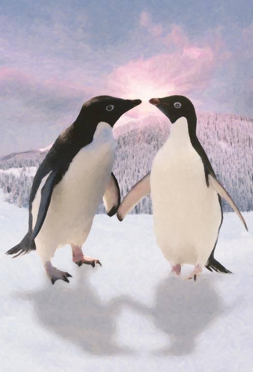 Pinguins Fotobehang (Wallpaper)