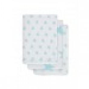 Jollein Hydrofiel Washandje Little Star Jade (3pack)