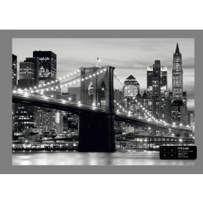Brooklyn Bridge B&W Fotobehang 4D (AG Design)