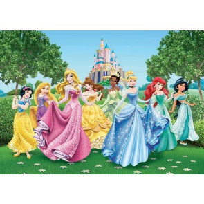 Disney Princesses Fotobehang 4D (AG Design)