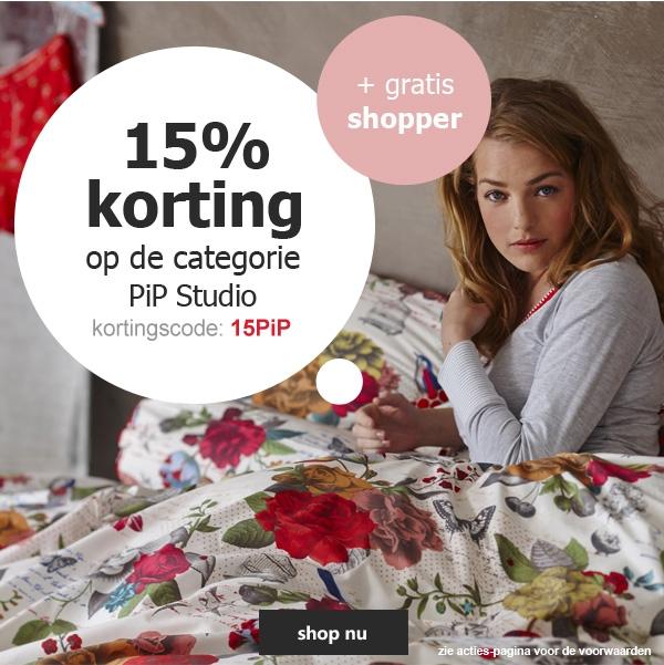 15% PiP Studio